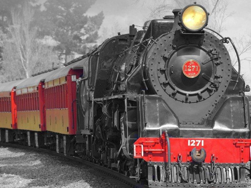 Railroading Merit Badge 2019