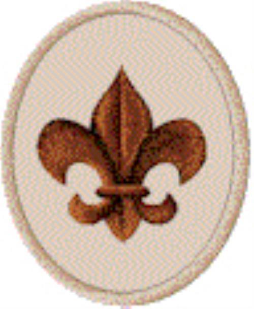 Scout Rank